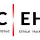 CEH Ethical Hacker v11 videos